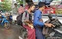 Thành phố Yangon ra sao sau lệnh thiết quân luật?