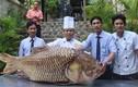 """Cận cảnh cá hô """"khủng"""" nặng gần 130kg vừa về Sài Gòn"""