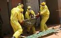 Clip hướng dẫn nhận biết, phòng ngừa đại dịch Ebola