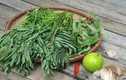 Những lợi ích bất ngờ của rau rút quen thuộc với người Việt