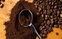 5 cách tuyệt vời sử dụng bột cà phê hỗ trợ tóc mọc nhanh