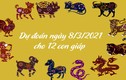 Dự đoán ngày 8/3/2021 cho 12 con giáp: Thìn thu nhập tăng, Hợi hao tài tốn của