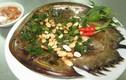 3 món ngon từ sam biển không ăn thì phí cả đời