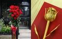 Hoa giá chát, mạ vàng tuyệt đẹp tặng nàng dịp Valentine