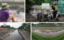 Nước sông Tô Lịch đổi màu từ đen sang nâu: Người dân nói gì?