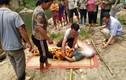 Yên Bái: Phát hiện xác chết trên suối, nghi bị điện giật