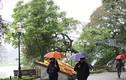Dự báo thời tiết 1/11: Hà Nội mưa lạnh, Trung Bộ mưa lớn