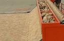 Mục sở thị chiếc máy lát gạch siêu độc đáo