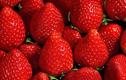 Những loại thực phẩm càng ăn nhiều càng giúp trắng răng