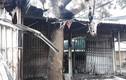 Hỏa hoạn thiêu rụi 4 ki-ốt chợ Quán Trắng - Hoà Bình, bé 8 tuổi tử vong