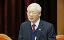 Tiểu sử ông Nguyễn Phú Trọng, Tổng Bí thư BCH Trung ương Đảng khóa XIII