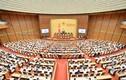 Tự ứng cử Đại biểu Quốc hội XV cần những điều kiện gì?