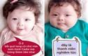 Ảnh chế cực yêu của bé Cadie - con gái Elly Trần