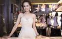 Gia tài đáng nể của Hoa hậu Mai Phương Thúy