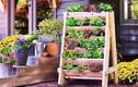 Những ý tưởng trồng vườn rau xanh mini trong nhà