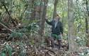 """Dũng sĩ săn Fulro một thời giờ hóa """"người rừng"""""""