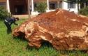 Cận cảnh tảng đá 20 tấn nghi khoáng sản cực quý ở Lâm Đồng