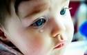 Người cứng rắn không biết khóc hóa ra lại hại thân