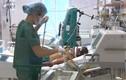 Một trường hợp suýt tử vong vì mắc liên cầu lợn