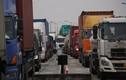 Ô tô ùn ứ dài hàng cây số trên cao tốc về Hải Phòng