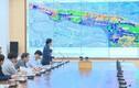 Quảng Ninh đầu tư xây dựng tuyến đường 10 làn xe gần 9.500 tỷ