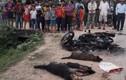 Dân vây đánh chết thanh niên trộm chó: Cảnh báo nhiều rồi!