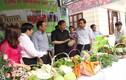 Trò chuyện với giám đốc nông dân buôn rau đi 7 quốc gia