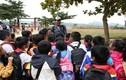 MC Phan Anh dự kiến xây bể bơi cho học sinh vùng lũ