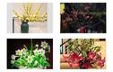 Ý nghĩa 10 loại hoa đẹp chưng trong nhà vào ngày Tết