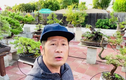 Mãn nhãn vườn bonsai tiền tỷ của Bằng Kiều ở Mỹ