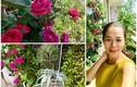 """""""Đã mắt"""" vườn ban công nở hoa 4 mùa trong nhà ca sĩ Mỹ Lệ"""