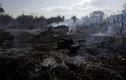 """Hình ảnh rợn người vụ cháy kỷ lục ở """"lá phổi xanh"""" rừng Amazon"""