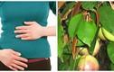 Video: 5 loài cây có sẵn trong vườn giúp giảm cơn đau dạ dày