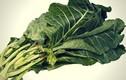 Video: Loại rau có thể cứu sống bạn mà lại dễ dàng tìm mua