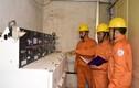 Đảm bảo cung cấp điện an toàn, ổn định và chất lượng phục vụ dịp Giỗ Tổ Hùng Vương