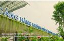"""Vì sao kiến trúc thành """"bệ đỡ"""" đưa sân bay Vân Đồn lên tầm TG?"""