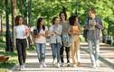 VINUNI mở vòng tuyển sinh đặc biệt thu hút sinh viên và các tài năng tầm cỡ quốc tế