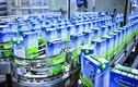 Vinamilk xuất khẩu gần 136 triệu USD các sản phẩm sữa