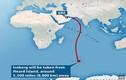 Triệu phú UAE kéo cả núi băng Nam Cực về giải khát