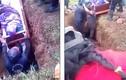 Video: Đang đặt quan tài xuống mộ, sự cố bất ngờ xảy ra