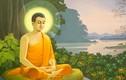 Phật chỉ dạy 4 người bạn đời ai cũng có