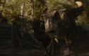 Video: Hộp sọ có thể chịu lực cắn tới 6 tấn của khủng long bạo chúa