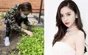 Sở hữu hàng trăm triệu USD, Angela Baby vẫn tự tay trồng rau sạch tại gia
