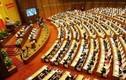Tuần này, Quốc hội thảo luận nhiều luật quan trọng