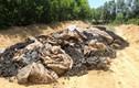 Formosa lên tiếng về số chất thải chôn ở trang trại
