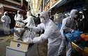 Hàn Quốc thêm 599 ca nhiễm COVID-19 mới/ngày, Mỹ 6 người tử vong