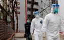 Hong Kong: Tìm thấy virus SARS-CoV-2 trong đường ống chung cư