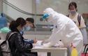 Viện Pasteur khẳng định bệnh nhân Đà Nẵng dương tính COVID-19