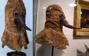 Giải mã mặt nạ mỏ chim quái dị của bác sĩ thế kỷ 16
