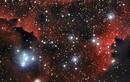 """Bí ẩn vũ trụ: Bất ngờ """"bức tranh"""" hình thành từ khu vực Hydro bị ion hoá"""